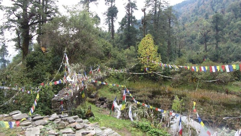 News -Unforgettable Dashain 2013-19